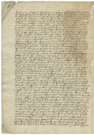 Letters patent from Elizabeth I, Queen of England : true copy