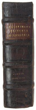 Spine, STC 19138 copy 2.