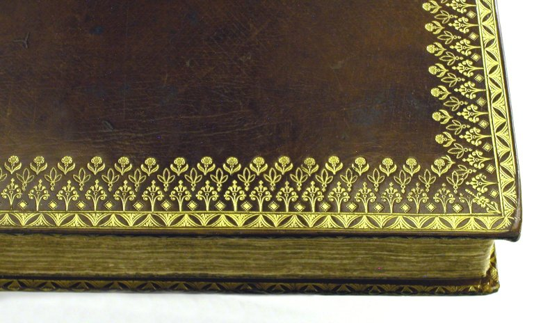 Fore-edge and board edge (detail), STC 2273 fo.1 no.08.
