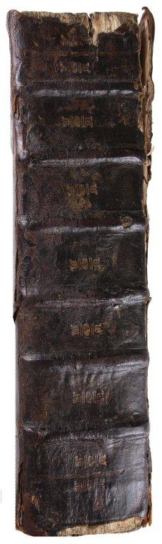Spine, STC 12375 c.3.