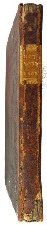Spine, INC G381.