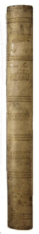 Spine, STC 18030 copy 1.