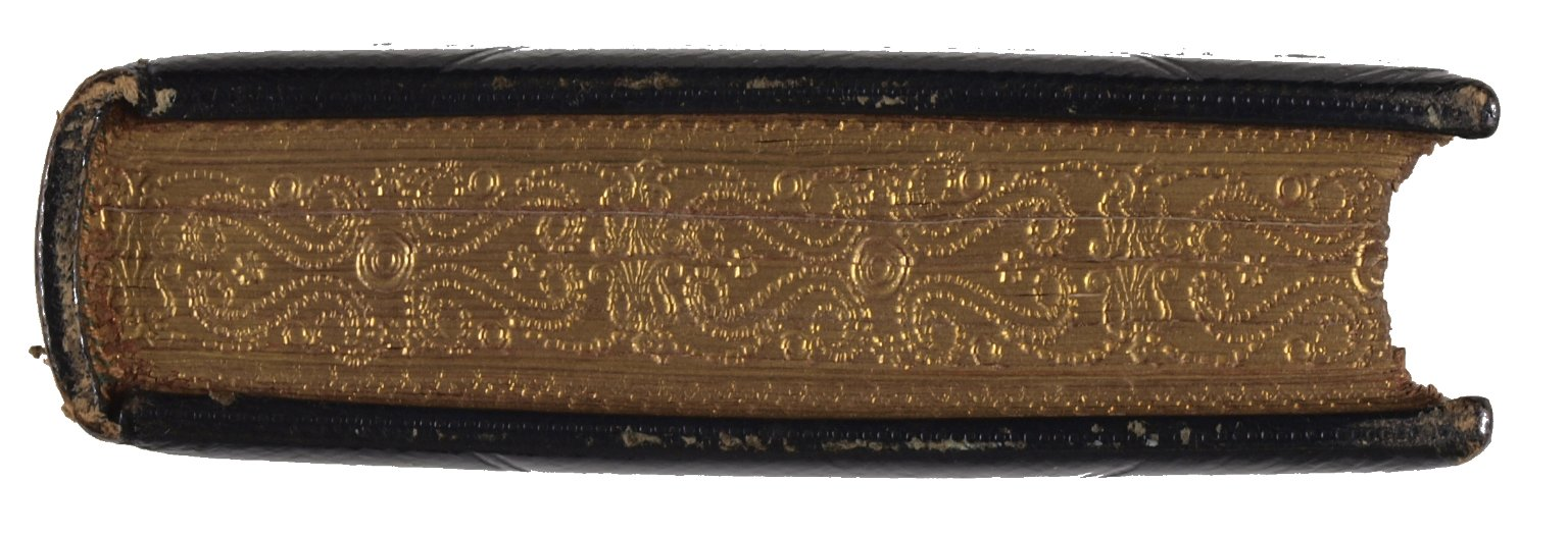 Gauffered edge, STC 16072.