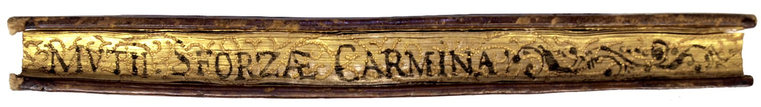 Fore-edge, BS1433 .S4 Cage.