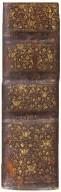 Spine (detail), STC 5068 copy 2.