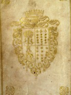 Coat of arms (detail), DP166 X5 Q9 cage.