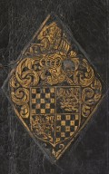 Coat of arms (detail), DS411.7 L8 F7 1554 cage.