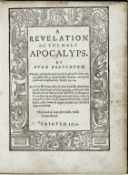 A reuelation of the holy Apocalyps. By Hugh Broughton.