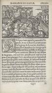Le second livre d'Amadis de Gaule ...
