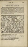 Pub. Ovidii Nasonis Metamorphoseon Libri XV. In singulas quasque Fabulas Argumenta. Ex postrema lacobi Micylli ...