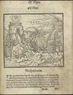 A christall glasse of christian reformation, ...