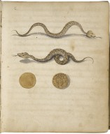 Herbarium, continens Theriaca medicamenta quae primum Andromachus, Neronis imperatoris medicus, deinceps Galenus, Dioscorides et alii medici composuerunt [manuscript], ca. 1680.