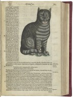 The historie of foure-footed beastes. Describing the true and liuely figure of euery beast, with a discourse of their seuerall names, conditions, kindes, vertues (both naturall and medicinall) countries of their breed, their loue and hate to mankinde, and
