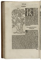 [New herball] The first and seconde partes of the herbal of William Turner Doctor in Phisick : lately ouersene, corrected and enlarged with the thirde parte, lately gathered, and nowe set oute with the names of the herbes, in Greke Latin, English, Duche, Frenche, and in the apothecaries and herbaries Latin, with the properties, degrees, and naturall places of the same ; here vnto is ioyned also a booke of the bath of Baeth in England, and of the vertues of the same with diuerse other bathes, moste holsom and effectuall, both in Almanye and England / set furth by William Turner Doctor in Phisick ; God saue the Quene.