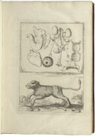 Memoir's for a natural history of animals...