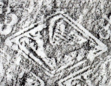 Front cover griffin in lozenge stamp (detail), INC N124.