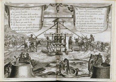 Histoire naturelle et morale des Antilles des l'Amerique