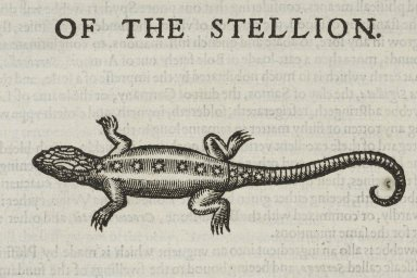 The historie of serpents.