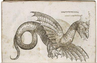 ...Serpentum, et draconum historiae libri duo ...