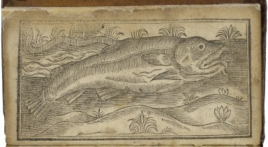 Vox piscis: or, The book-fishcontayning three treatises which were found in the belly of a cod-fish in Cambridge Market, on Midsummer Eue last, anno Domini 1626.