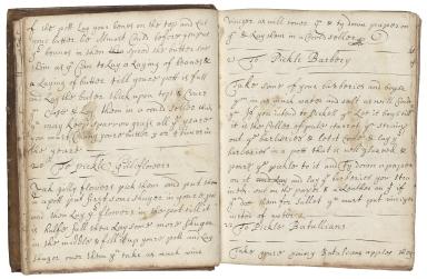 Cookbook of Elizabeth Fowler [manuscript].