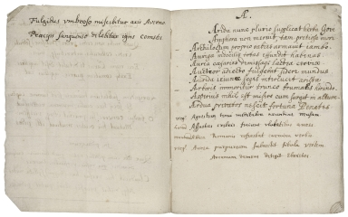 Commonplace book of Sir Edward Dering [manuscript].