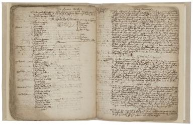 Book on heraldry [manuscript].