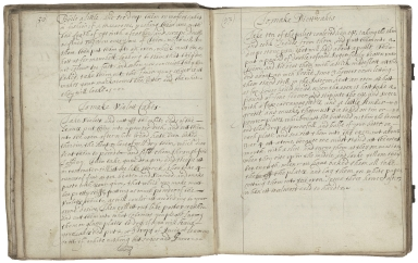 Cookery and medicinal recipes of the Granville family [manuscript].