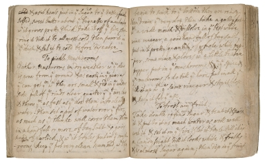 Cookery and pharmaceutical recipes of the Malet family [manuscript].