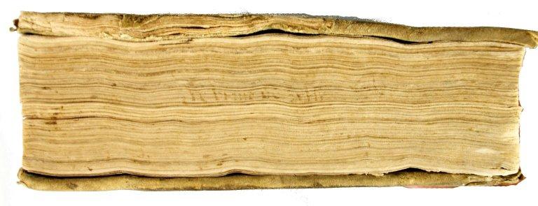 Foredge, INC L140 copy 1.