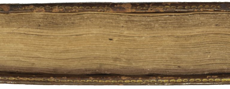 Fore-edge detail