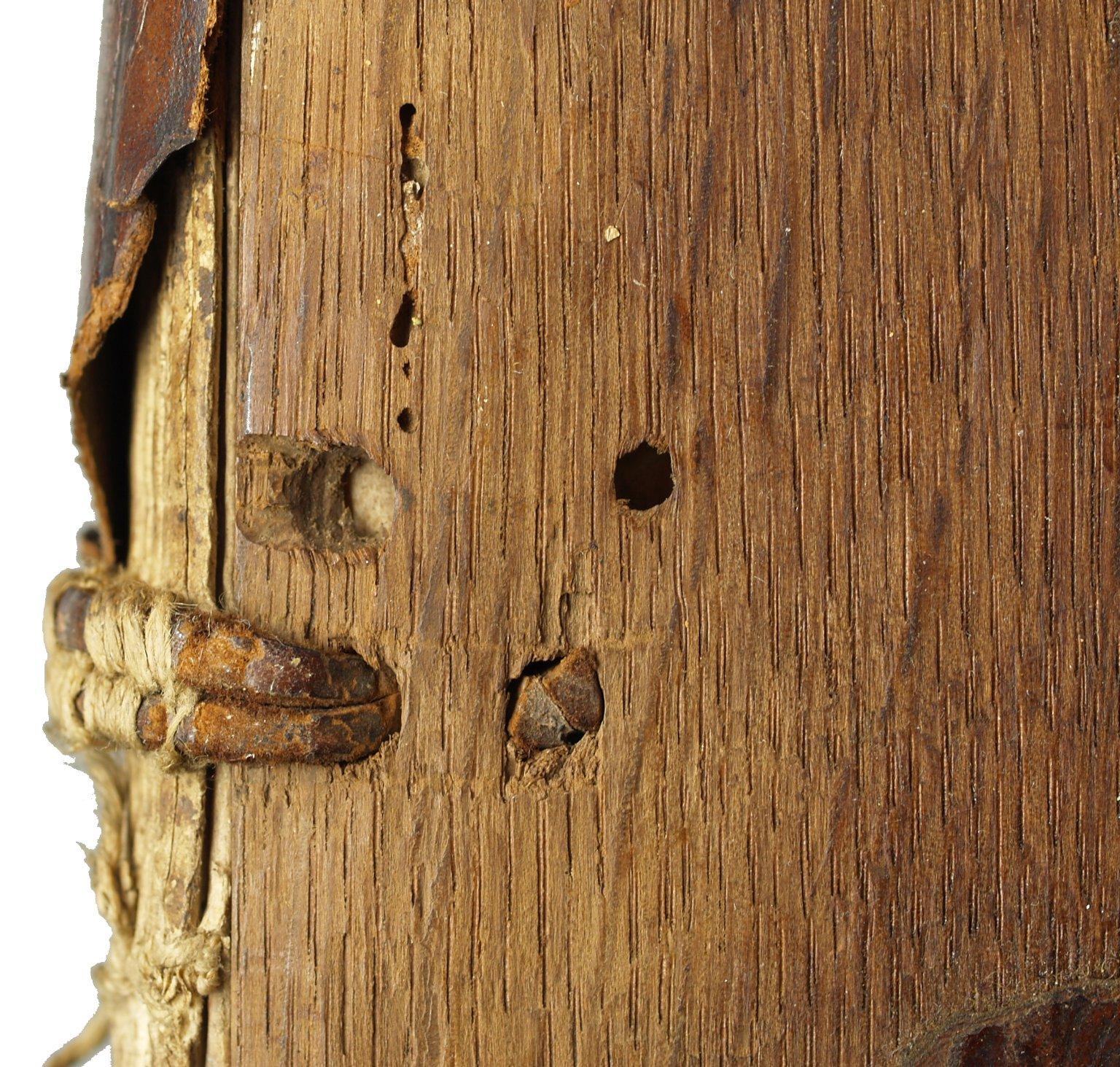 Thong lacing (detail), INC M26.