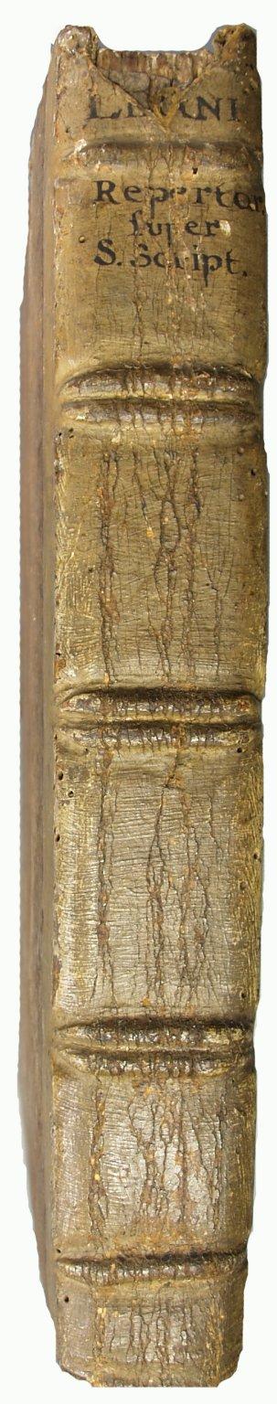 Spine, INC N124.