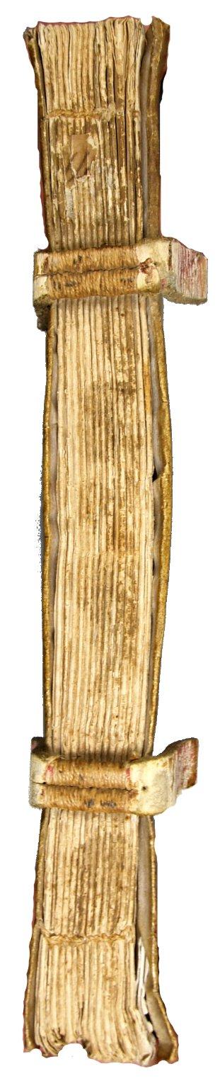 Spine, INC P353 copy 1.
