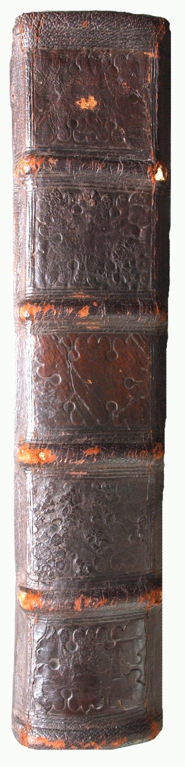 Spine, INC P4116 copy 1.