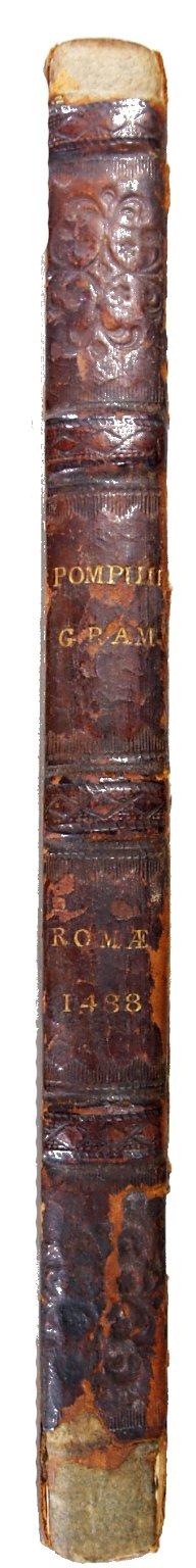 Spine, INC P831.