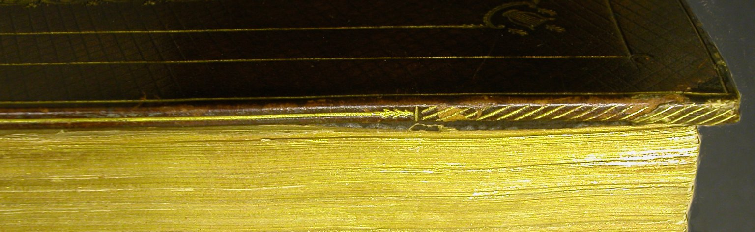 Fore-edge and board edge (detail), STC 2273 fo.1 no.11.