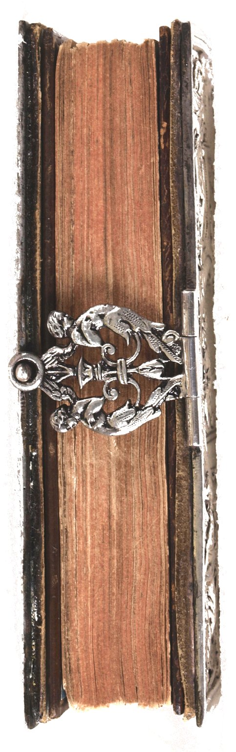 Fore-edge and hasp detail, STC 3492.