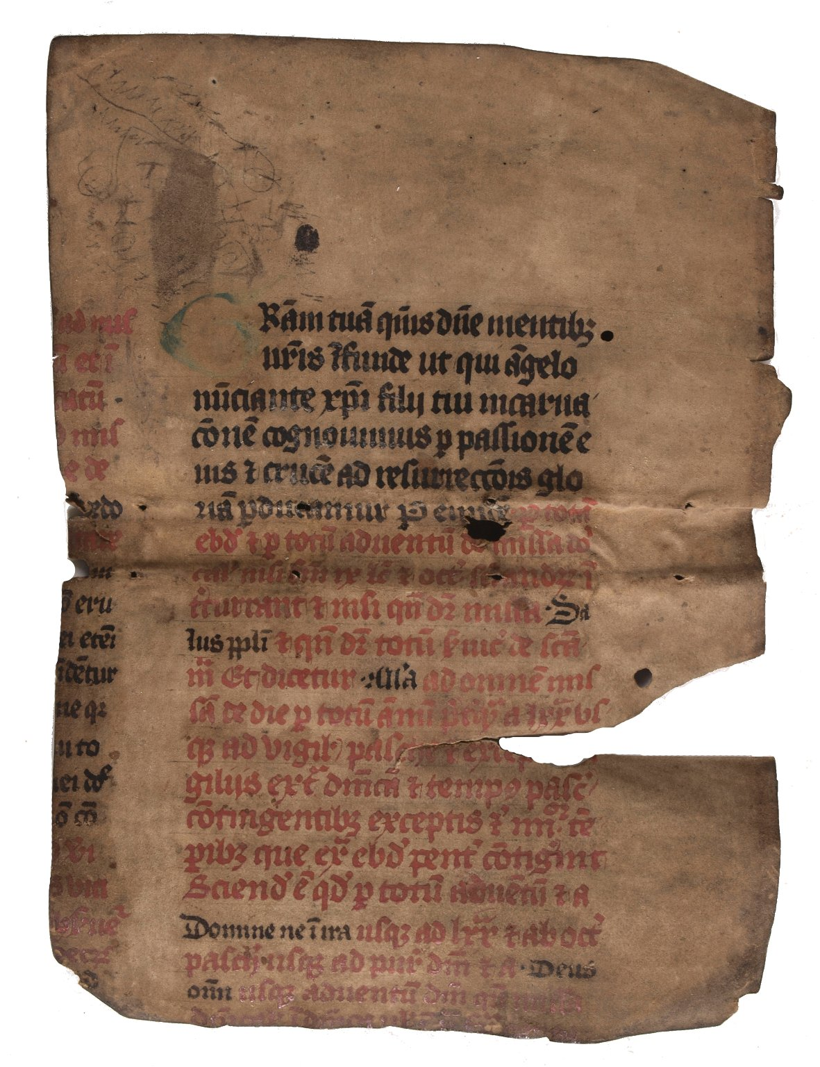 Inside original vellum cover, STC 12158.8.