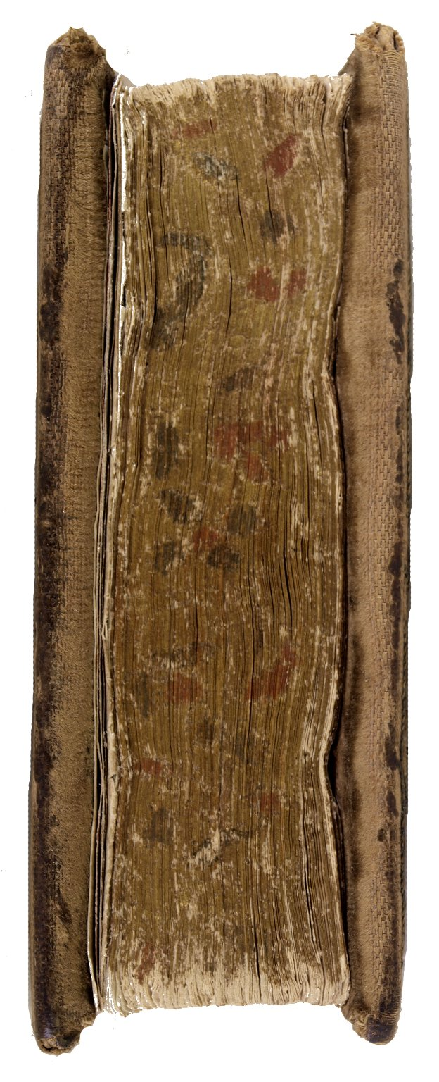 gilt, gauffered and painted fore-edge