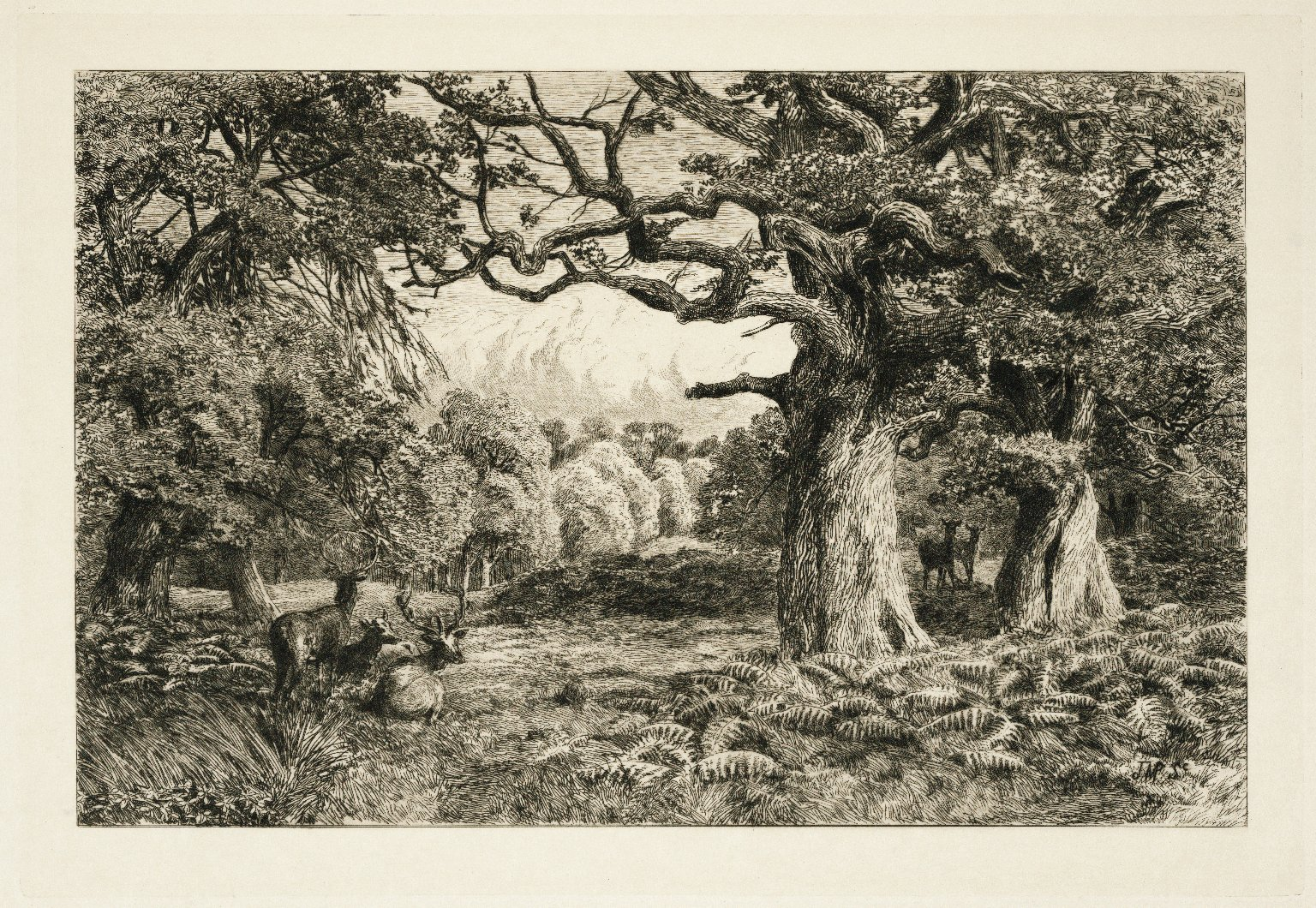 The land of Shakespeare / a series of thirty-one etchings from original drawings made for this work by John Macpherson...