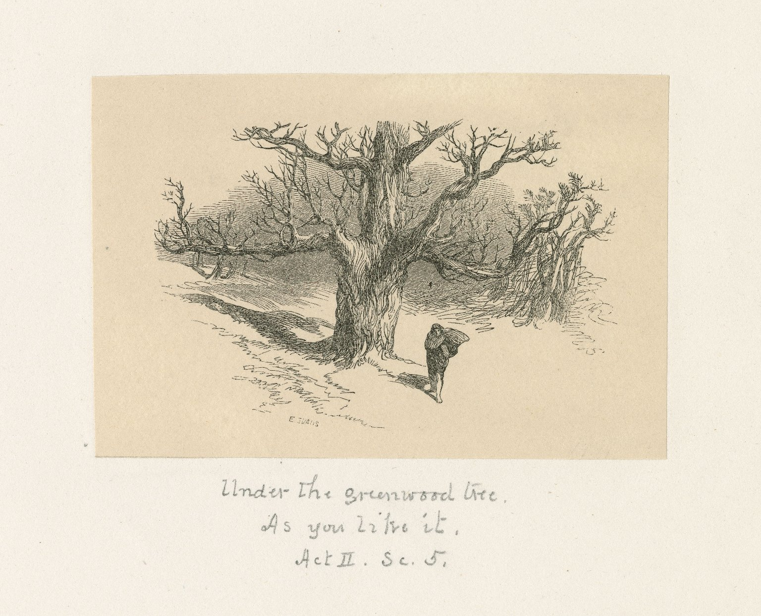 Under the greenwood tree [graphic] : As you like it, act II, sc. 5 / E. Evans.