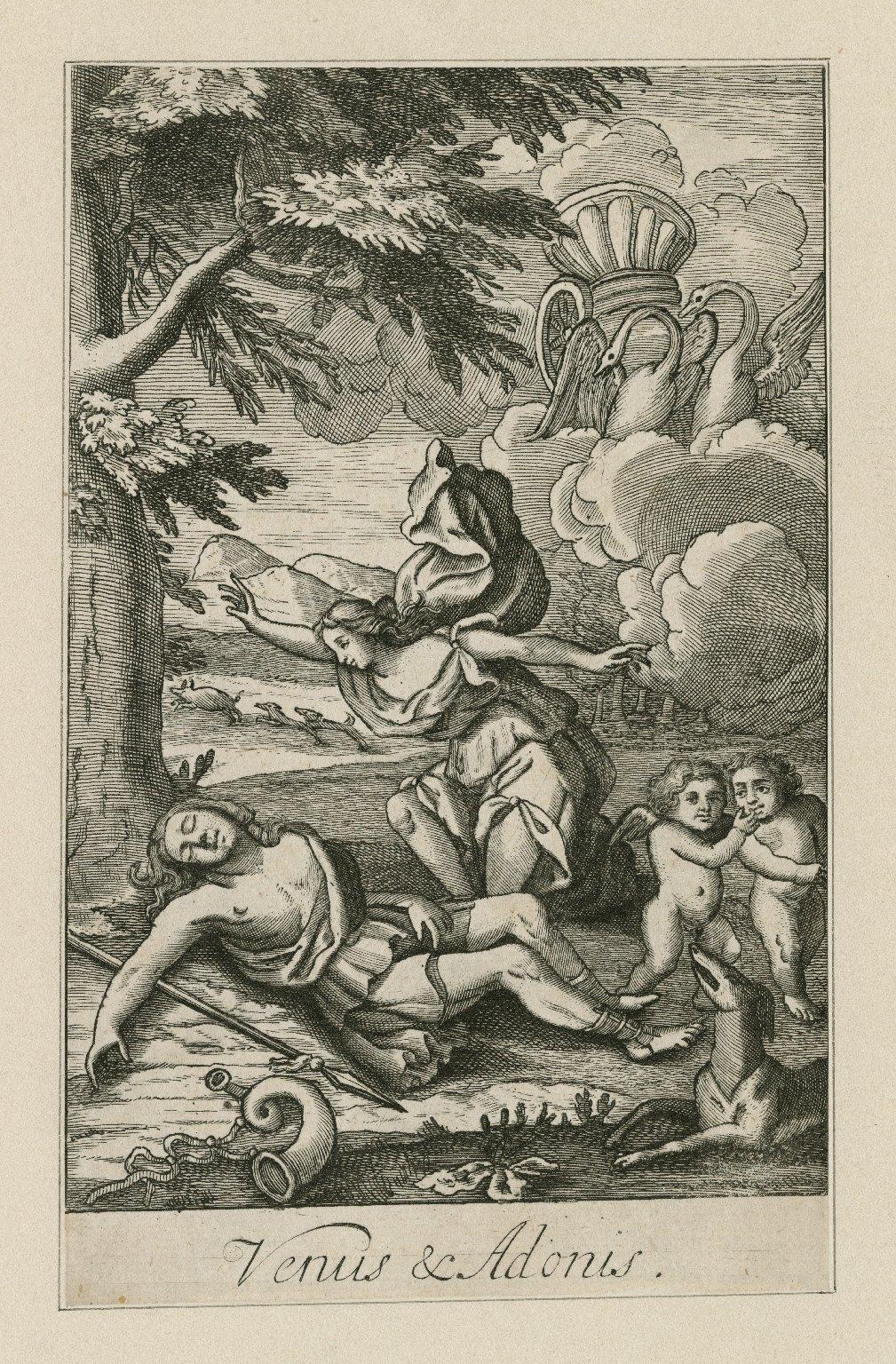 Venus & Adonis [graphic].