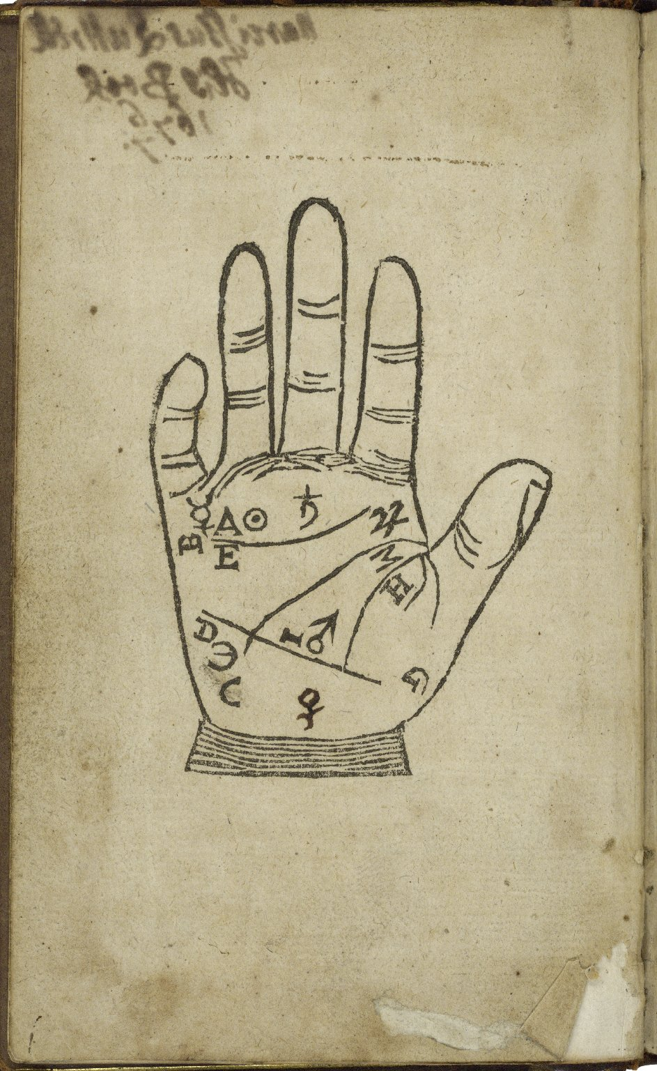 [Chiromantia. English] The book of palmestry and physiognomy. Being brief introductions, both natural, pleasant, and delectable, unto the art of chiromancy, or manual divination ...