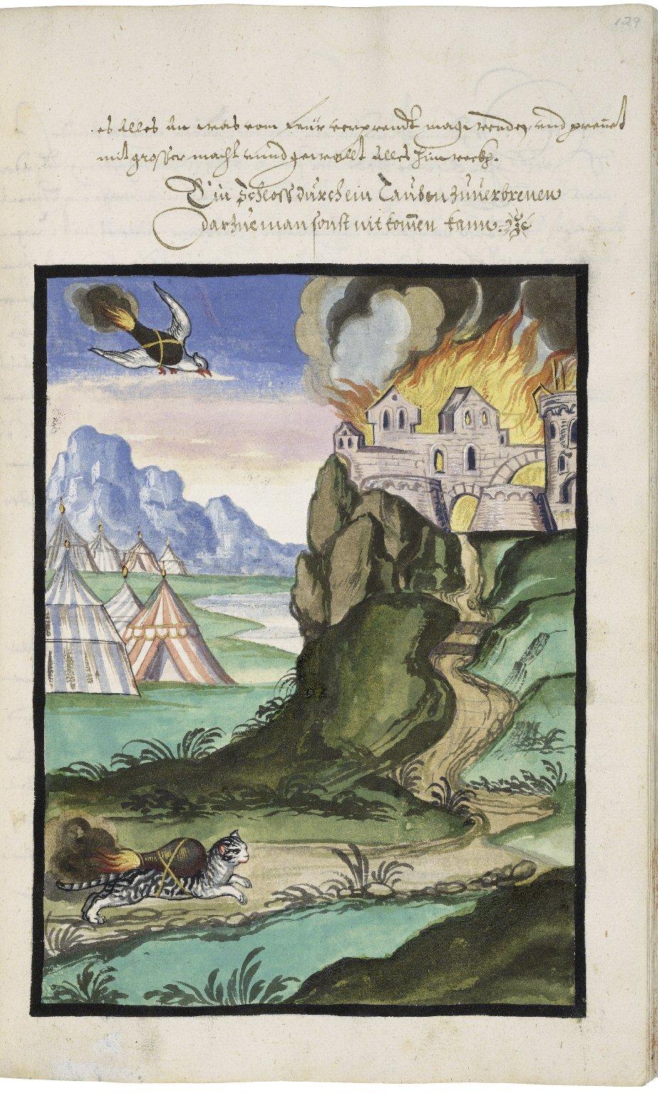 Ein wahres Probiertes und Pracktisches geschriebenes Feuerbuch ...