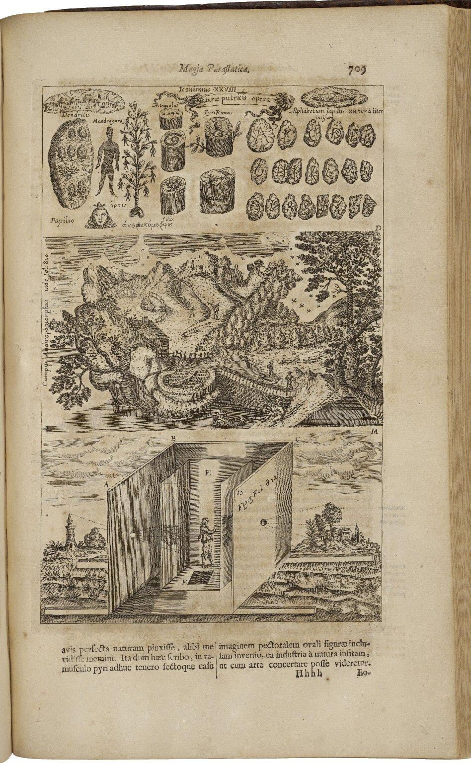 ...Ars magna lucis et umbrae, in X. libros digesta...